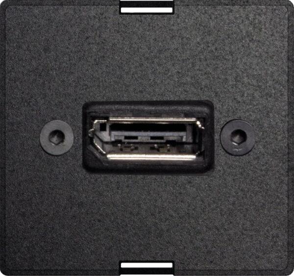 Exchangeable module DisplayPort full - EVOlineStore