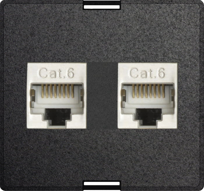 Exchangeable module 2x RJ45 modular CAT6 full